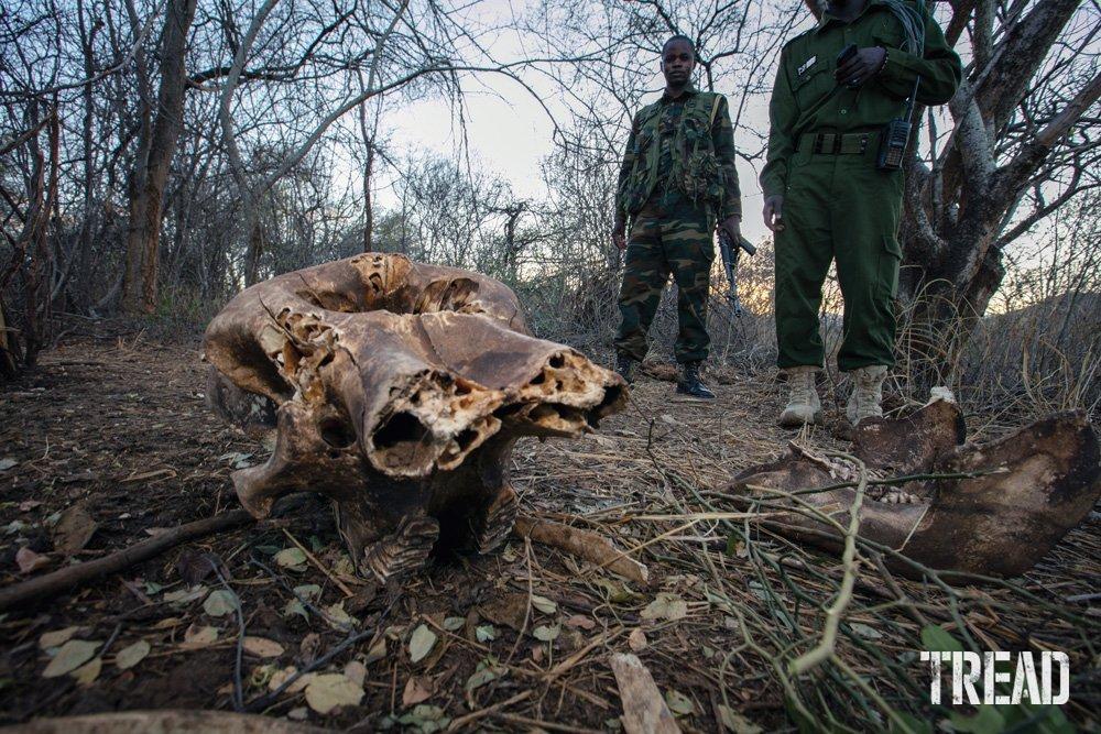 Rangers at a rhino reserve in Kenya.